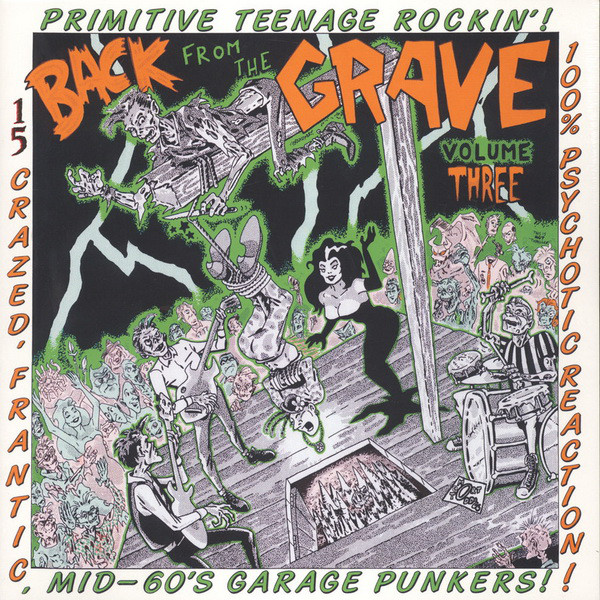 Mid-60s Garage Punkers | VA: BACK FROM THE GRAVE Vol. 3 LP